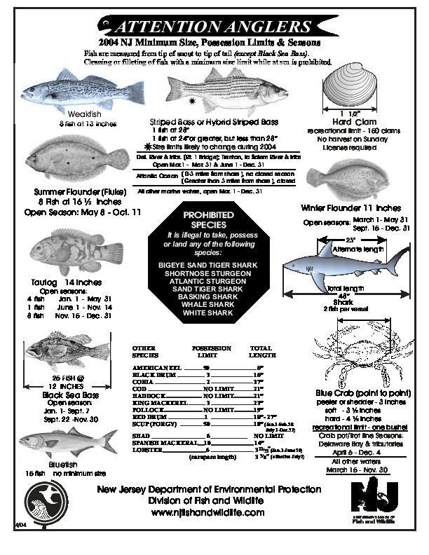 Nj salt fish regshistory for Nj saltwater fishing report