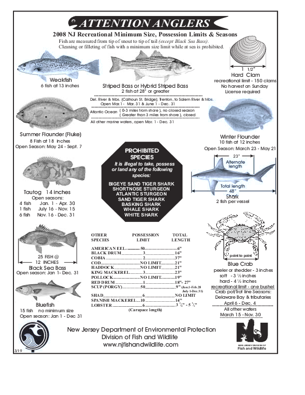 Nj salt fish regshistory for Fishing license requirements