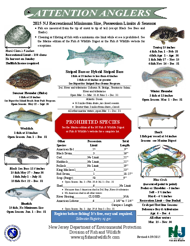 nj salt fish nj fishing regulations 2017