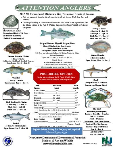 Nj Salt Fish Regshistory