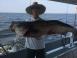 2017-06-15 Seahunter Atlantic Highlands