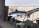 2017-06-29 Blue Chip Sportfishing Point Pleasant Beach