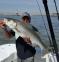2016-05-13 Bill Chaser Sandy Hook